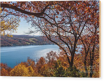 Keuka Lake Vista Wood Print by William Norton
