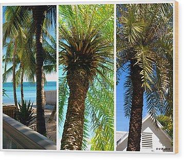 Key West Palm Triplets Wood Print by Susanne Van Hulst