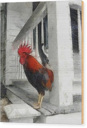 Key West Porch Rooster Wood Print by Michelle Calkins