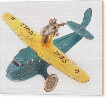 Kilgore Sea Gull Airplane Wood Print by Glenda Zuckerman