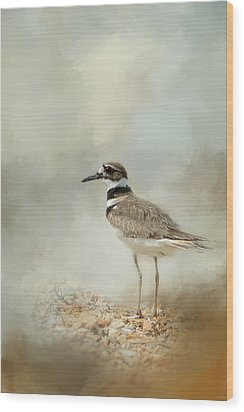 Killdeer On The Rocks Wood Print by Jai Johnson