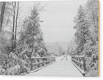 Wood Print featuring the photograph Kindness Is Like Snow by Lori Deiter