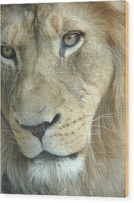 Wood Print featuring the photograph King by Margaret Bobb