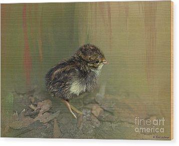 King Quail Chick Wood Print