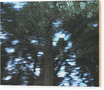 King Tree Wood Print by Brad Wilson