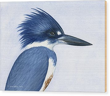 Kingfisher Portrait Wood Print by Charles Harden