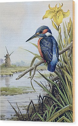 Kingfisher With Flag Iris And Windmill Wood Print by Carl Donner