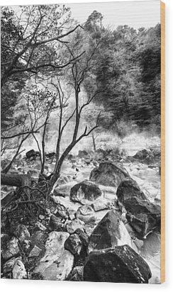 Wood Print featuring the photograph Kirishima by Hayato Matsumoto