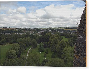 Wood Print featuring the photograph Kiss The Blarney Stone by Dianne Levy