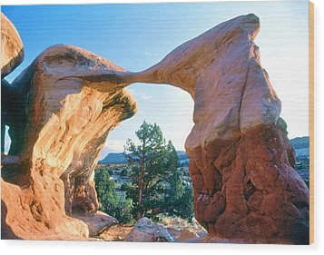 Kissing Birds Rock Formation Wood Print