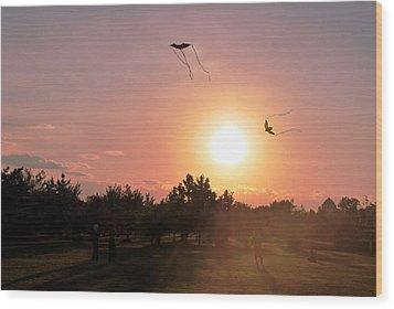 Kites Flying In Park Wood Print