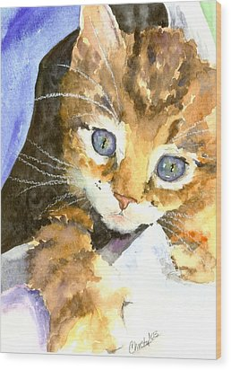 Kitten In Blue Wood Print