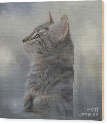Kitten Zada Wood Print