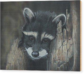 Kit...the Baby Raccoon Wood Print
