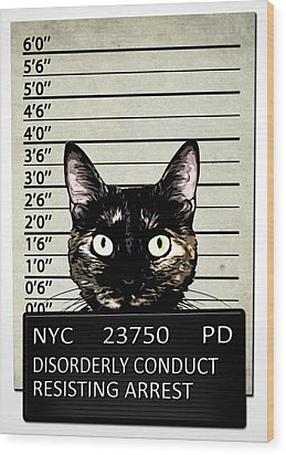 Kitty Mugshot Wood Print by Nicklas Gustafsson