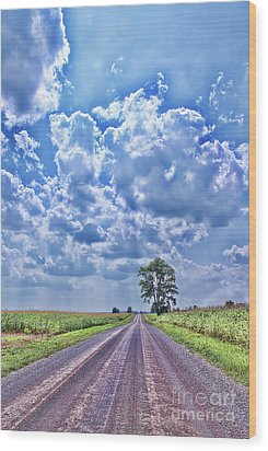 Knowing The Right Way Wood Print by Cathy  Beharriell