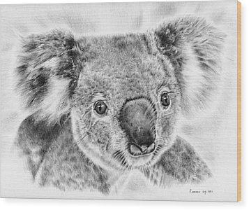 Koala Newport Bridge Gloria Wood Print by Remrov