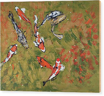 Koi 201746 Wood Print by Alyse Radenovic