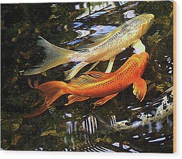 Koi Fish Swim In Synch Wood Print