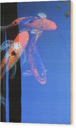 Koi Vi  Blue Wood Print