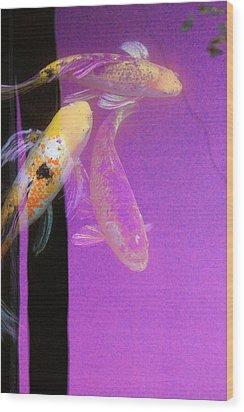 Koi Vi Magenta Wood Print