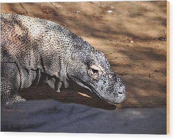 Wood Print featuring the photograph Komodo Kountry by John Knapko
