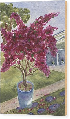 Wood Print featuring the painting Kona Bougainvillea by Jamie Frier
