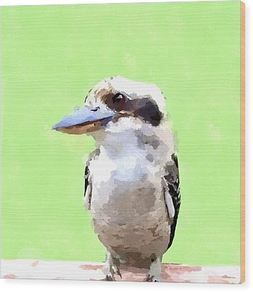 Kookaburra Wood Print by Chris Butler