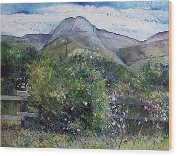 Kopberg Heidelberg Western Cape South Africa Wood Print by Enver Larney