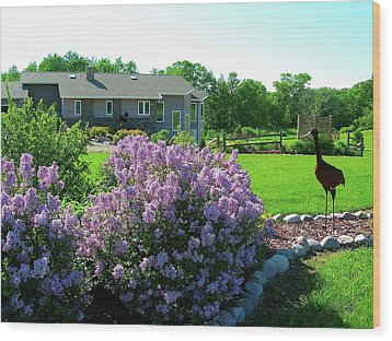 Wood Print featuring the photograph Korean Lilacs And Sandhill Crane by Randy Rosenberger