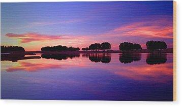 Ksar Ghilane Oasis At Sunset Wood Print by John McKinlay