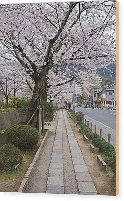 Kyoto In Bloom Wood Print