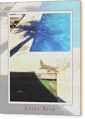 la Casita Playa Hermosa Puntarenas Costa Rica - Iguanas Poolside Greeting Card Poster Wood Print