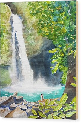 La Fortuna Waterfall Wood Print