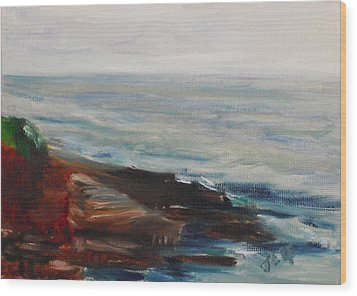 La Jolla Cove 070 Wood Print by Jeremy McKay