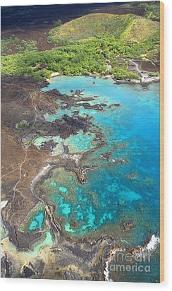 La Perouse Bay Wood Print by Ron Dahlquist - Printscapes