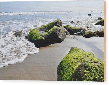 La Piedra Shore Malibu Wood Print by Kyle Hanson