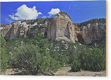 Wood Print featuring the photograph La Ventana Arch by Gary Kaylor