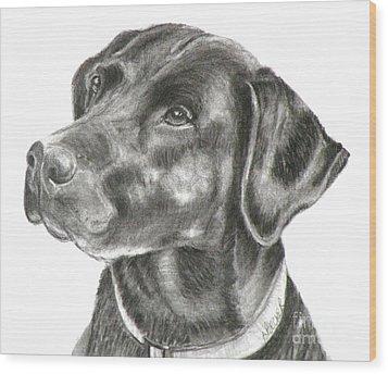 Lab Charcoal Drawing Wood Print