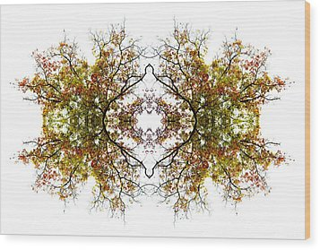 Lace Wood Print by Debra and Dave Vanderlaan