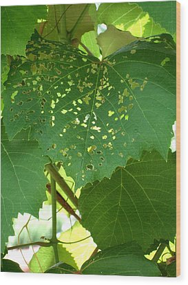 Lace In The Vines Wood Print by Mindy Newman