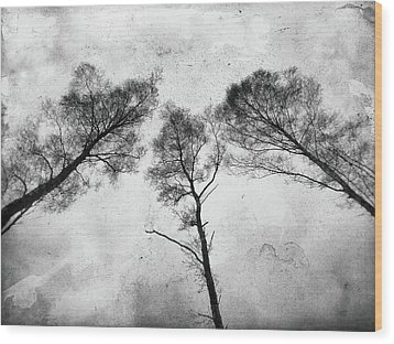 Ladies Of The Woods Wood Print