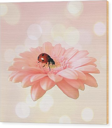 Lady On Pink Wood Print by Sharon Lisa Clarke