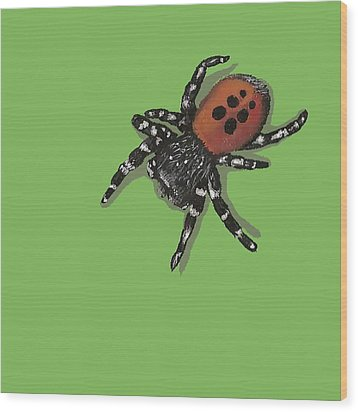 Wood Print featuring the painting Ladybird Spider by Jude Labuszewski