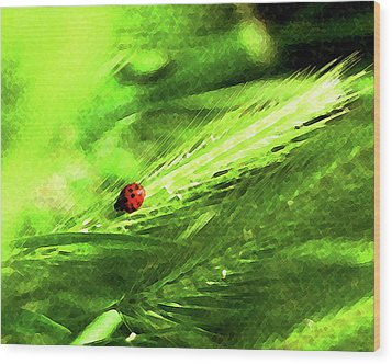 Wood Print featuring the digital art Ladybug by Timothy Bulone