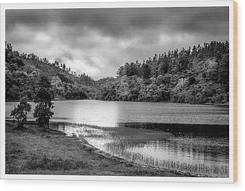 Lagoa Do Itapeva-pindamonhangaba-sp Wood Print