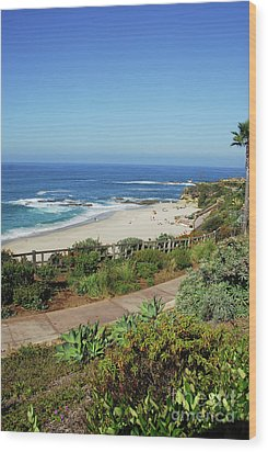 Laguna Afternoon Wood Print by Timothy OLeary