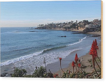 Laguna Beach Wood Print