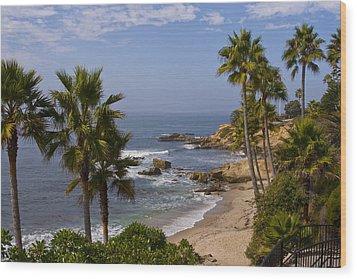 Laguna Beach Coastline Wood Print by Lou Ford