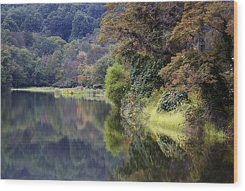 Wood Print featuring the photograph Lake Abbott Reflections by Alan Raasch